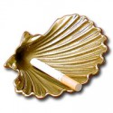 Coquille St Jacques - 9563