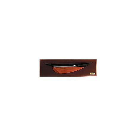 Demi-coque bateau Pen Duick 20 cm - 1905